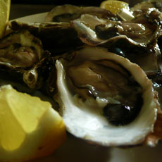 Fresh oysters / Frutti di mare, Scheveningen, The Hague
